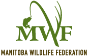Manitoba Wildlife Federation